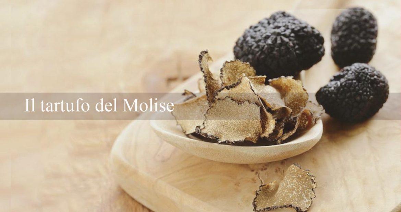 Il tartufo del Molise