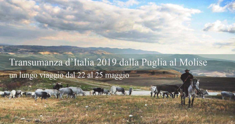 Transumanza dalla Puglia al Molise