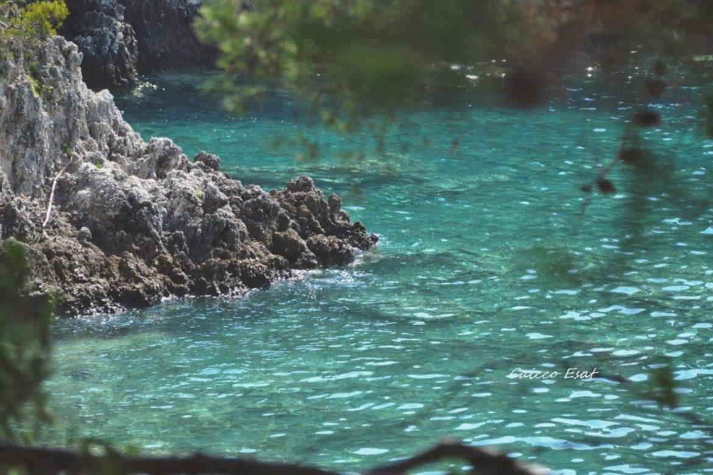 """Il profilo di San Domino da lontano ci sembrava un'onda fatta di roccia bianca a strapiombo sul mare e verde scuro, con la sua fitta vegetazione di pini d'Aleppo e macchia mediterranea. Quando dopo un'ora di traversata, sbarchiamo al porto di San Domino … nell'aria un sottofondo musicale speciale! """"Dice che era un bell'uomo e veniva dal mare, parlava un'altra lingua però sapeva amare …"""""""