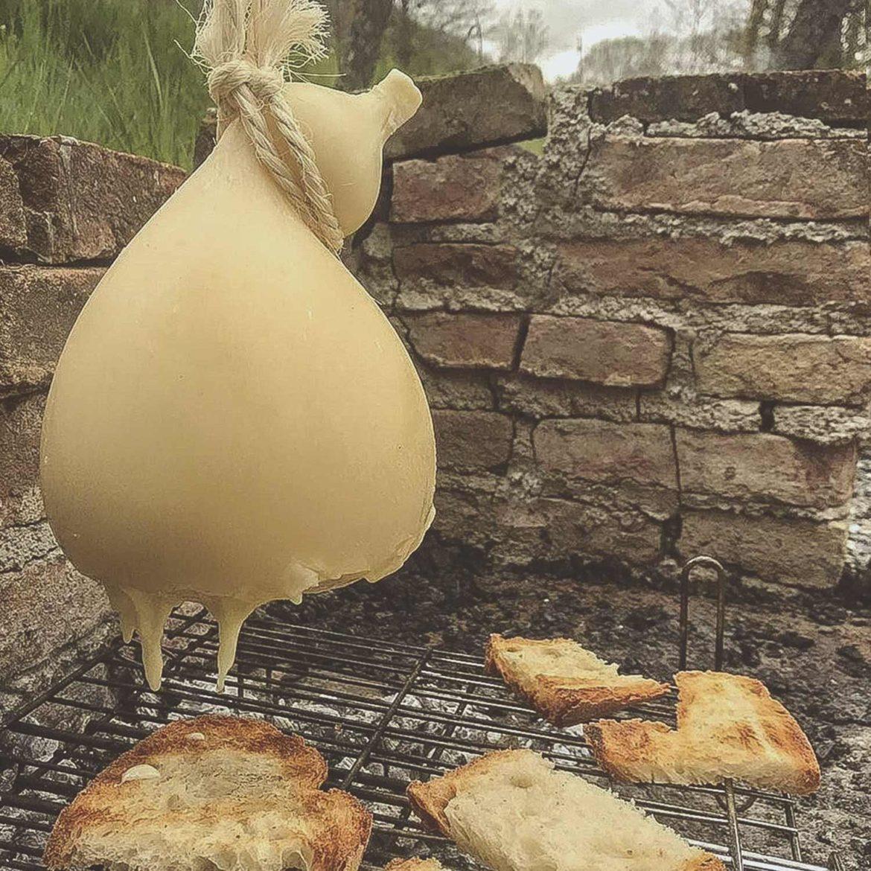 Il formaggio del Molise: il Caciocavallo